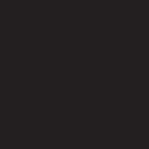 History - CMU - Carnegie Mellon University