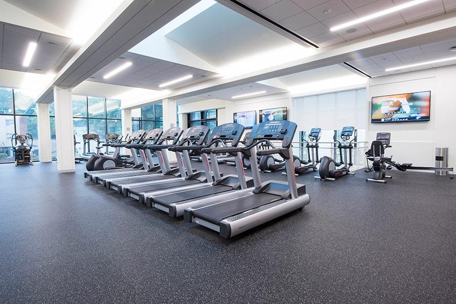 Fitness Center Jared L Cohon University Center