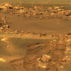 live feed from mars rover - photo #1