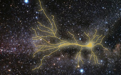 neuron in space!