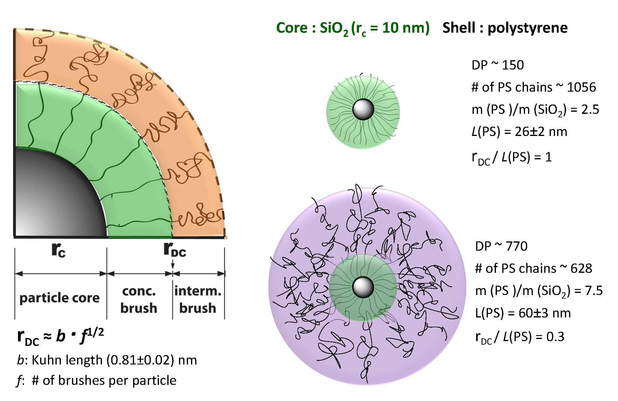Functional Particles - Matyjaszewski Polymer Group - Carnegie Mellon