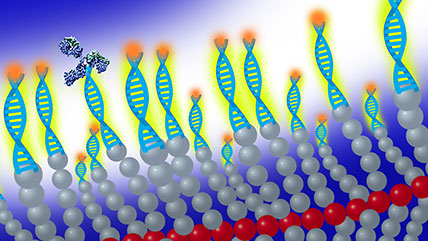 bottlebrush polymer with DNA and glowing tips illustration