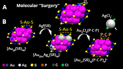 "diagram of ""molecular surgery"""