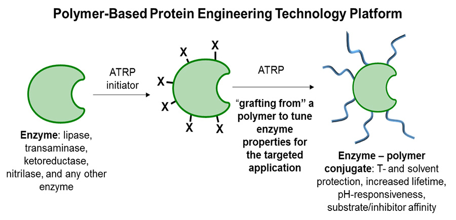 A graphic portraying the polymer-based protein engineering technology platform.